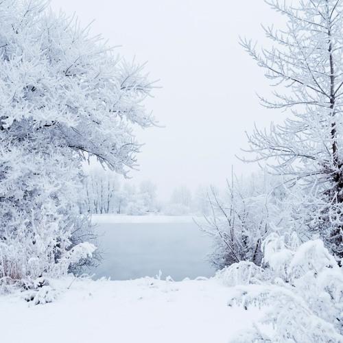 Antonio Vivaldi The Four Seasons- Winter  Allegro Non Molto