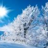 Antonio Vivaldi  The Four Seasons- Winter  Largo