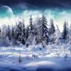 Antonio Vivaldi  The Four Seasons- Winter  Allegro