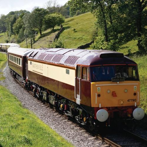 Xpander - Orient Express