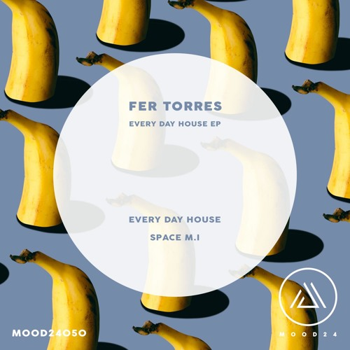 Fer Torres - Every Day House