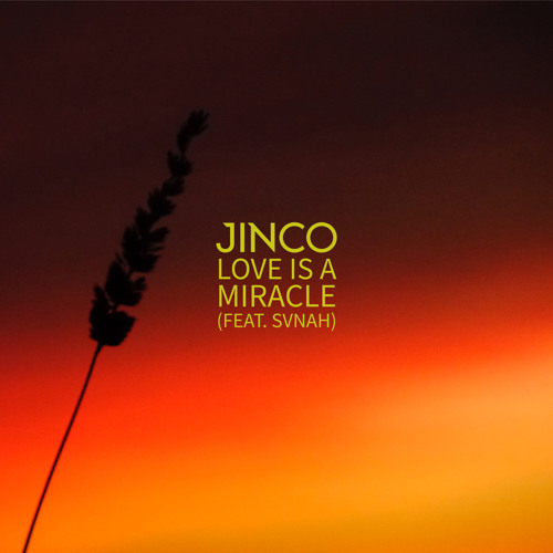 Love Is A Miracle Feat Svnah By Jinco