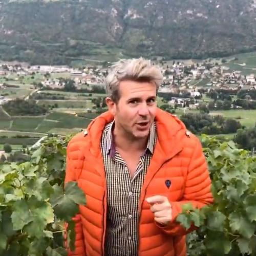 Get Swissed with Swiss wine