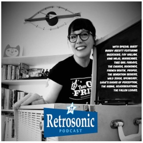 Retrosonic Episode 33 with Special Guest Brett Buddy Ascott