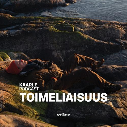 TOIMELIAISUUS