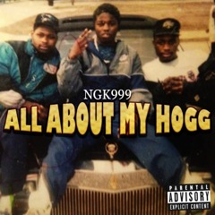 ALL ABOUT MY HOGG