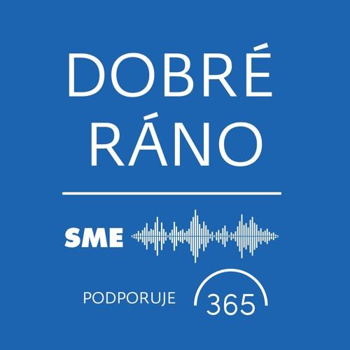 Piatok, 8. 2. 2019: Pätnásťročná prax Roberta Fica je tak trochu hanba