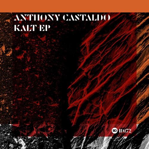 ID172 3. Anthony Castaldo - Strange Things