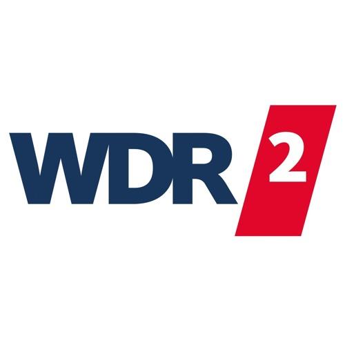 WDR 2 zum Grünpfeil für Radfahrende