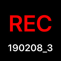 REC_20190208_3(1)aac.m4a