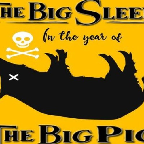 'THE BIG SLEEP IN THE YEAR OF THE BIG PIG W/ TRACY TWYMAN'   – February 8, 2019