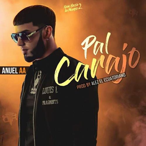 Anuel AA - Pal Carajo (Audio Oficial) 2019 RealHastaLaMuerte