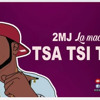 2MJ - Tsa Tsi Tso ! (afrikalandbizz.com)