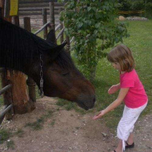 Unejutt hobustest, koertest ja hirmu võitmisest
