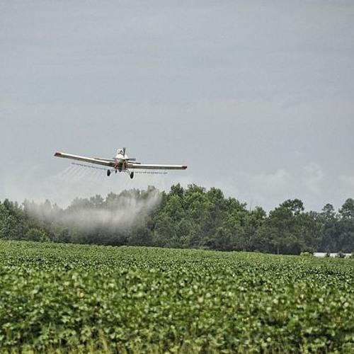 Agronegócio quer revogar lei que proíbe a pulverização aérea de agrotóxicos no Ceará