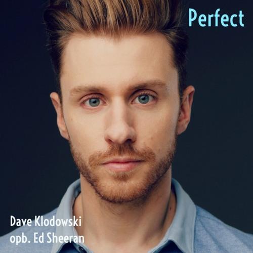 Perfect (a cappella)