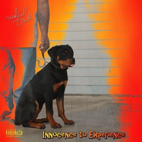 Innocence to Experience