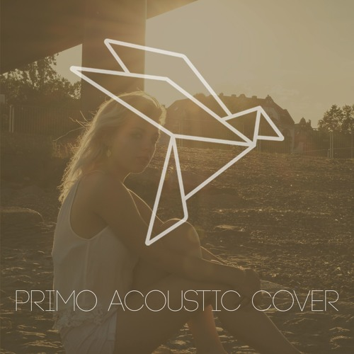 Primo Acoustic Cover