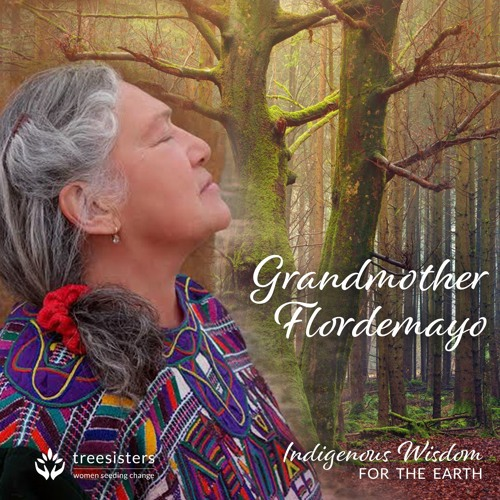 Indigenous Wisdom For The Earth With Grandmother Flordemayo