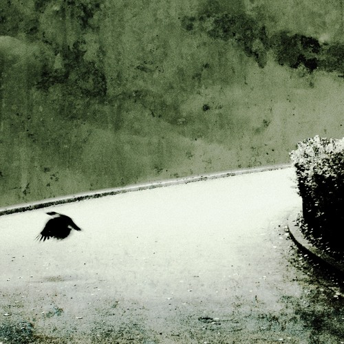 You Lost Me (Edit)