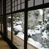 Winter Nights  at the Tea House