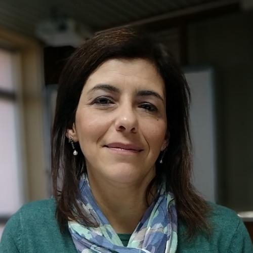 Adelaide João Bernardino, Coordenadora da área ambiental do Porto de Sines, no programa da CPSI