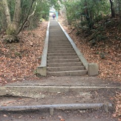 Too Many Stairs