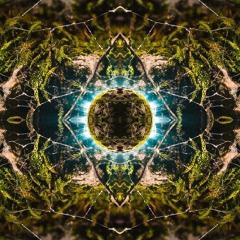 Psychedelic Adventure - LYKE Set