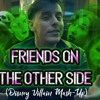 Friends On The Other Side - Disney Villain Mash - Up Thomas Sanders