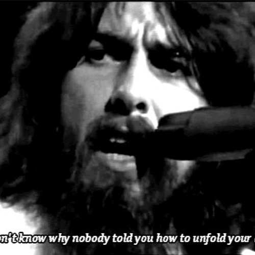 While Glaciers Weep - While my Guitar Gently Weeps by George Harrison/Beatles with climate lyrics