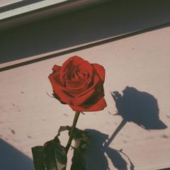cant help falling in love - Angelina Jordan