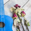 Upbeat Fun Happy Ukulele  - Kids Music | Acoustic Background Music (FREE DOWNLOAD)