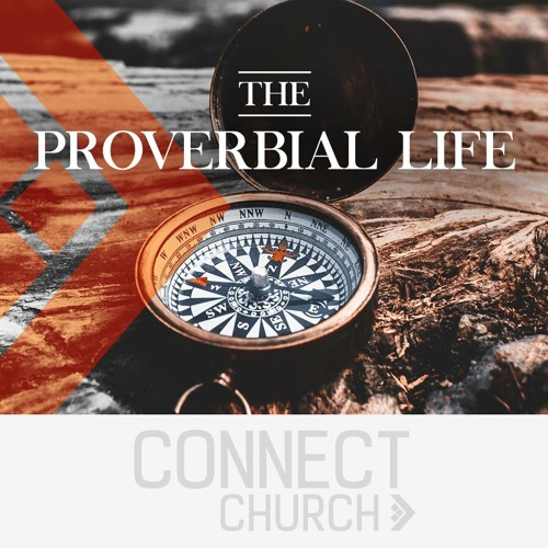 The Proverbial Life - The Pro-Virtual Life