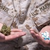 Is Marijuana Like Heroin? Is it OK for Vets to Use Marijuana as Therapy?