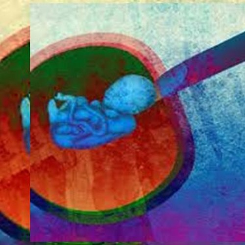 Christian Experience 008 - What Can Christians DO About Abortion?