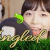 Download 「라푼젤(Tangled)OST When Will My Life Begin Mandy moo (2) Mp3