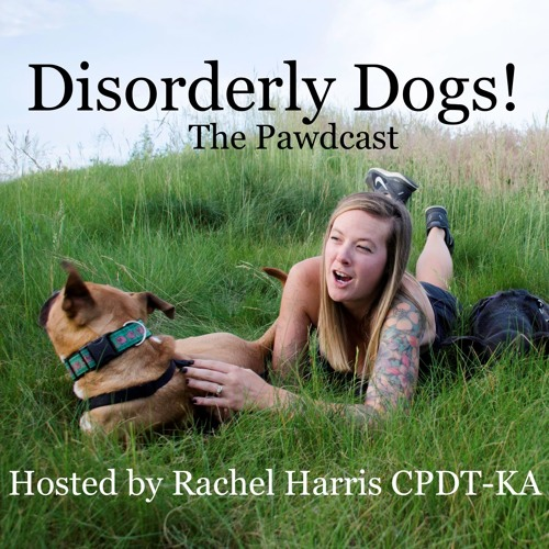 Disorderly Dogs! The Pawdcast! Episode 1, Jumping on guests