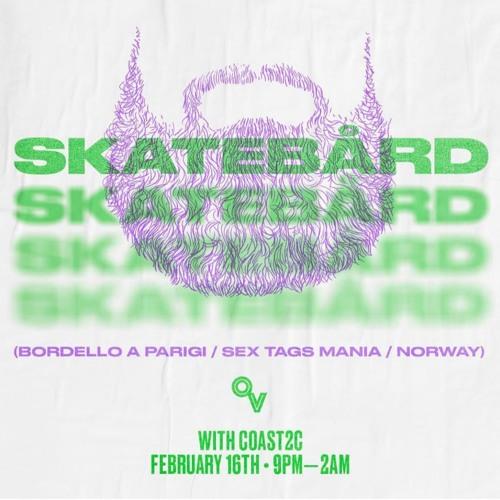 Skatebård in Portland, Oregon, February 16th 2019, first half of the set.