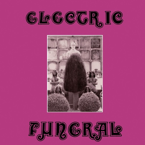 ELECTRIC FUNERAL - The Wild Performance (snippets)