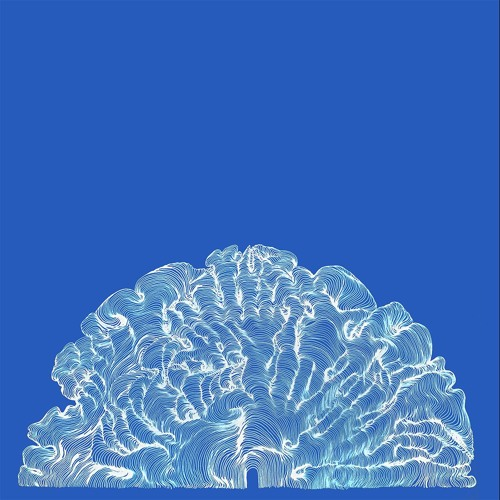 Leafcutter John - Elephant Bones
