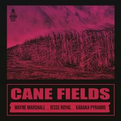 Natural High Ft Wayne Marshall X Jesse Royal X Kabaka Pyramid - Cane Fields