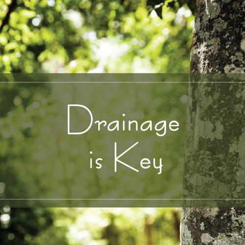 Drainage is Key