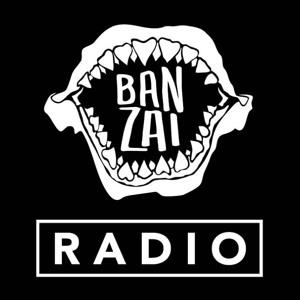 Hardwell & Henry Fong ft  Mr  Vegas - Badam (Noizekid Remix