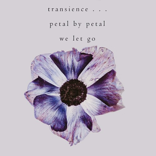 [naviarhaiku268] Transience (We Let Go)