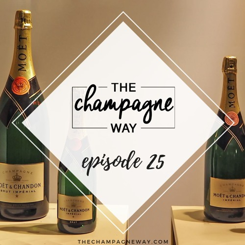 Episode 25- Thanksgiving, Magnums & Holiday Soirees