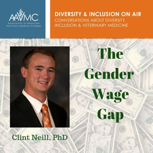 47: The Gender Wage Gap