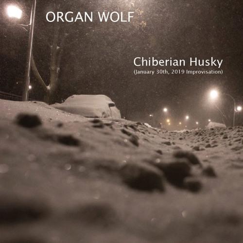 Chiberian Husky (January 30th, 2019 Improvisation)