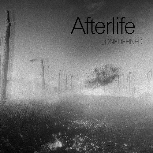 ONEDEFINED - Afterlife (Original Mix)