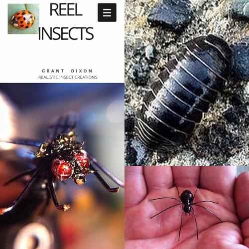 31 Reel Insects Grant Dixon