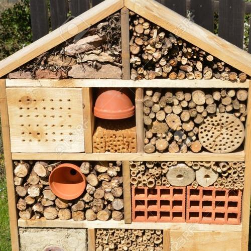"""Reportage """"Fabriquer un hôtel à insectes avec des enfants, pour favoriser la biodiversité"""""""